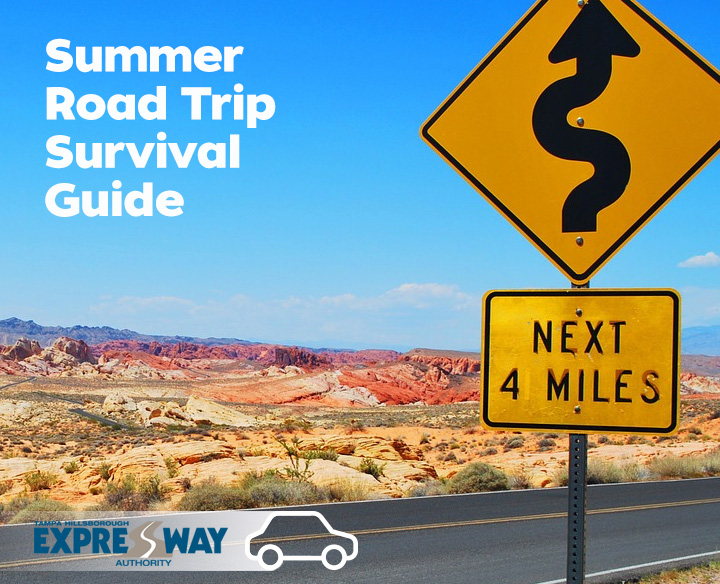 Summer Road Trip Survival Guide